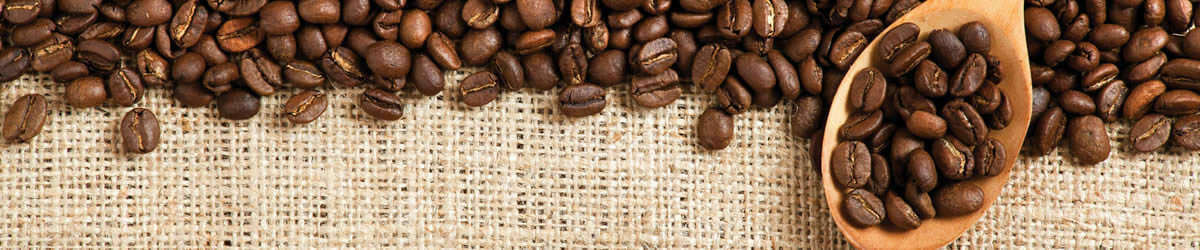 Roasted coffee beans on burlap.