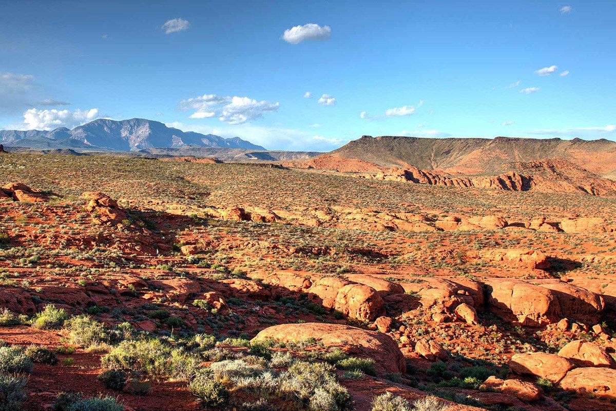 Scenic desert vista