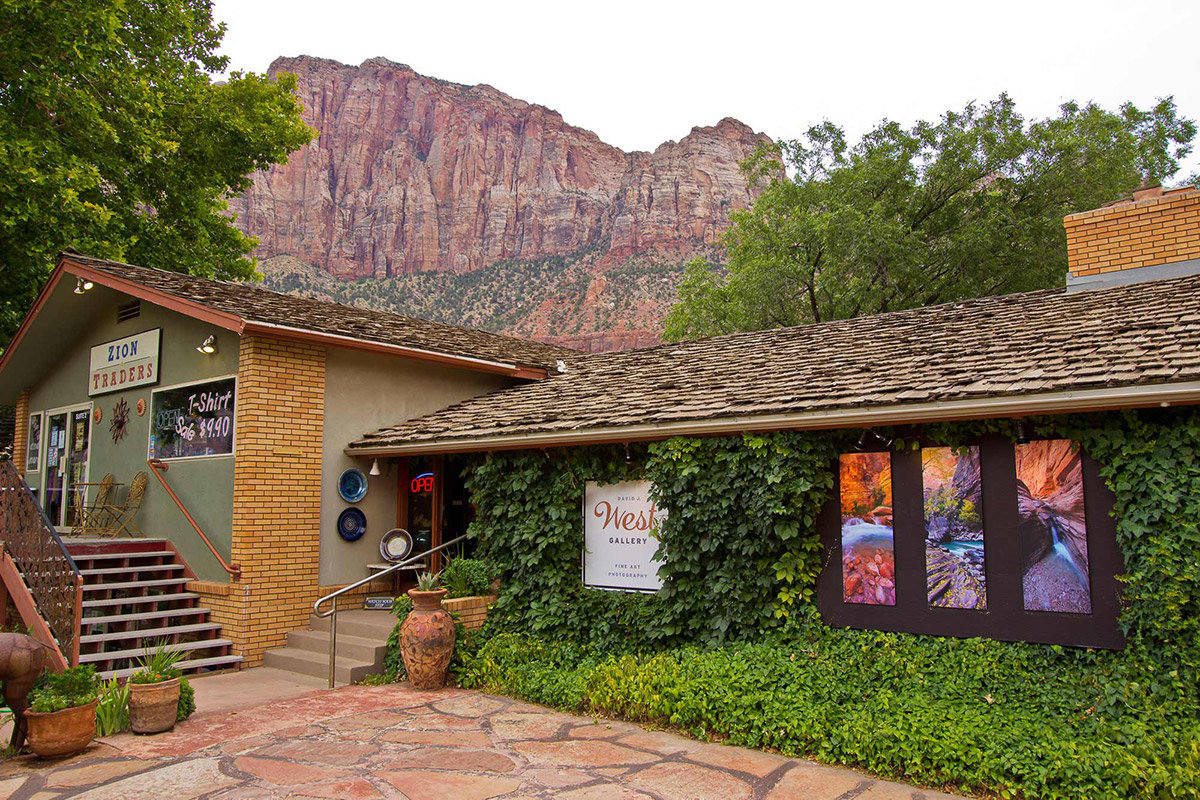 Exterior of vine-covered art gallery with mountains in background
