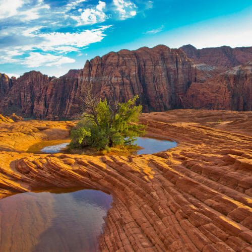 Gepooltes Wasser auf den versteinerten Dünen im Sand Hollow State Park