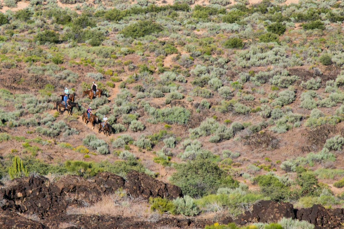 Horseback riders on switchback.