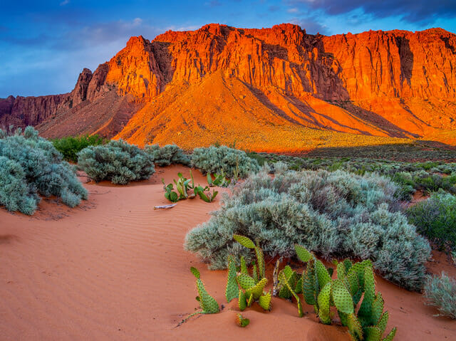 Red mountains loom over desert. Photo Credit: Nathan Wotkyns