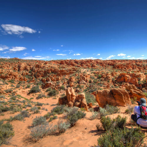 Man hiking in the Red Cliffs National Conservation Area