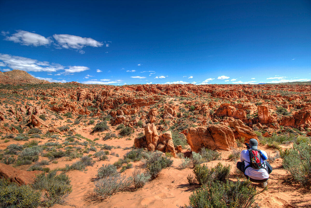 Man preparing to take a photograph of red rock formations under blue sky.