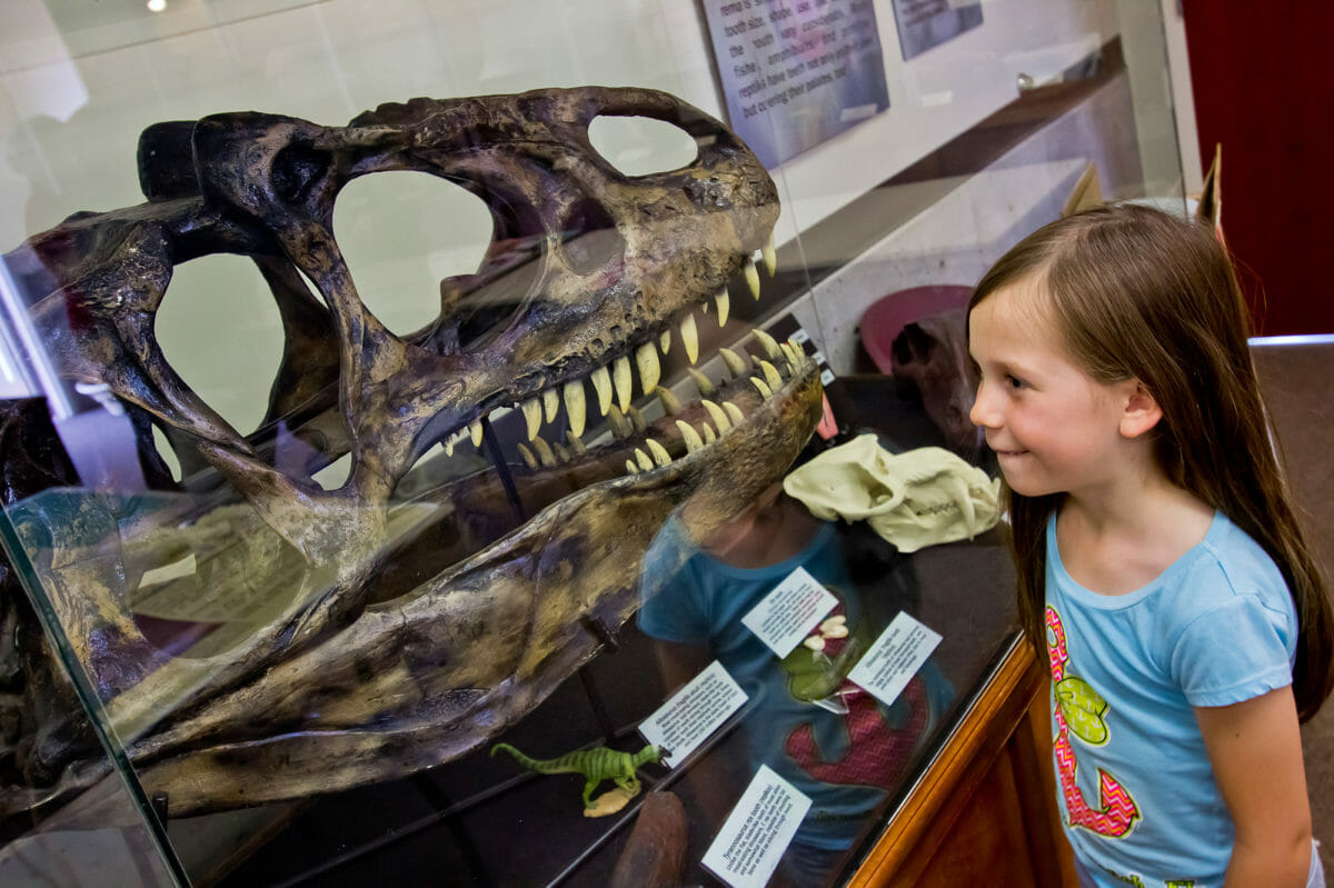 Young girl at Dinosaur Discovery Site at Johnson Farm