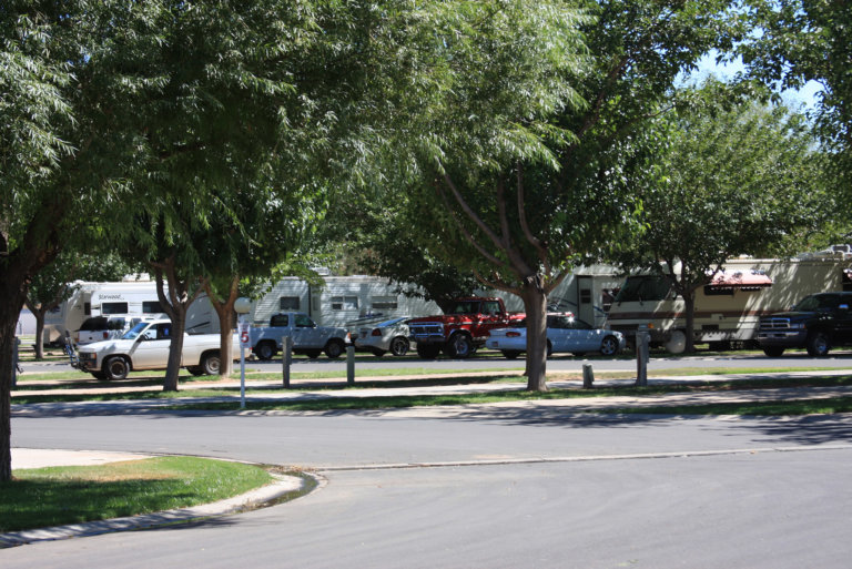Tree-lined RV park