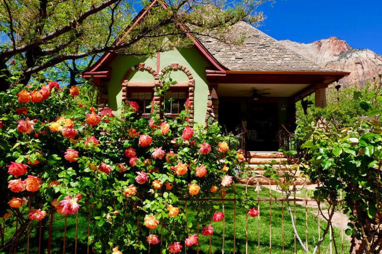 バラに囲まれた歴史的な家