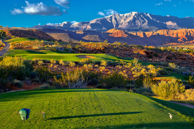 View from the tee of green grass, desert plants, and snow capped mountain peaks