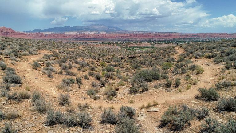 Desert mountain biking trail
