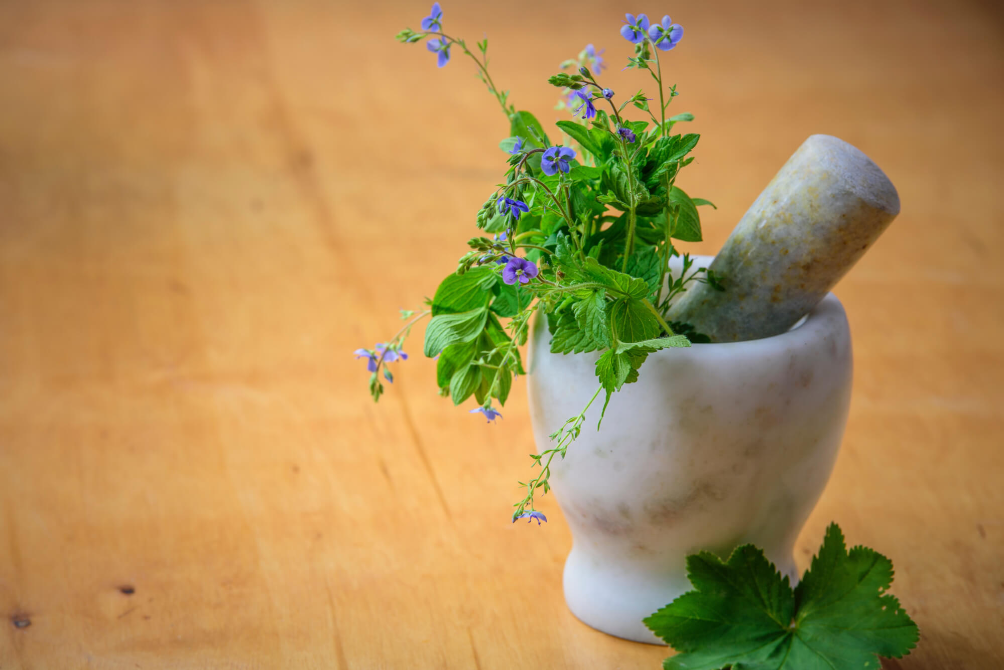 Green herbs in mortar with pestle
