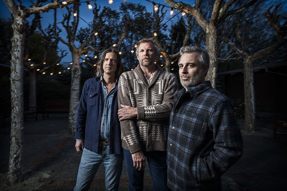 Three men in sweaters standing under lighted trees