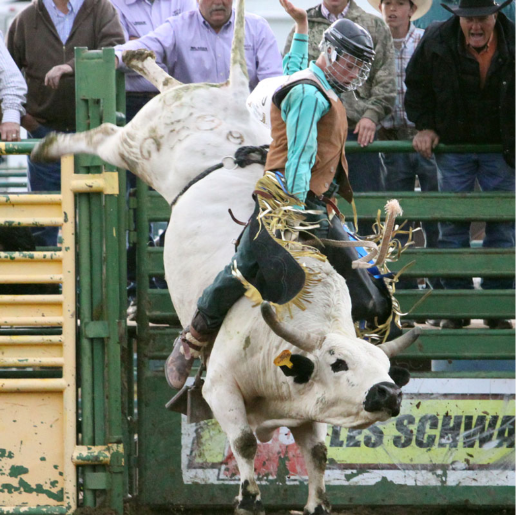 uhsra rodeo