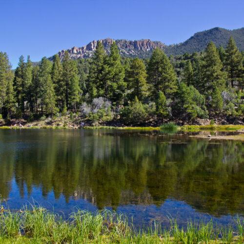 valle dei pini utah